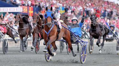 timoko elitlopp 394x221 fan zone news archives harness racing fan zone harness racing news at soozxer.org
